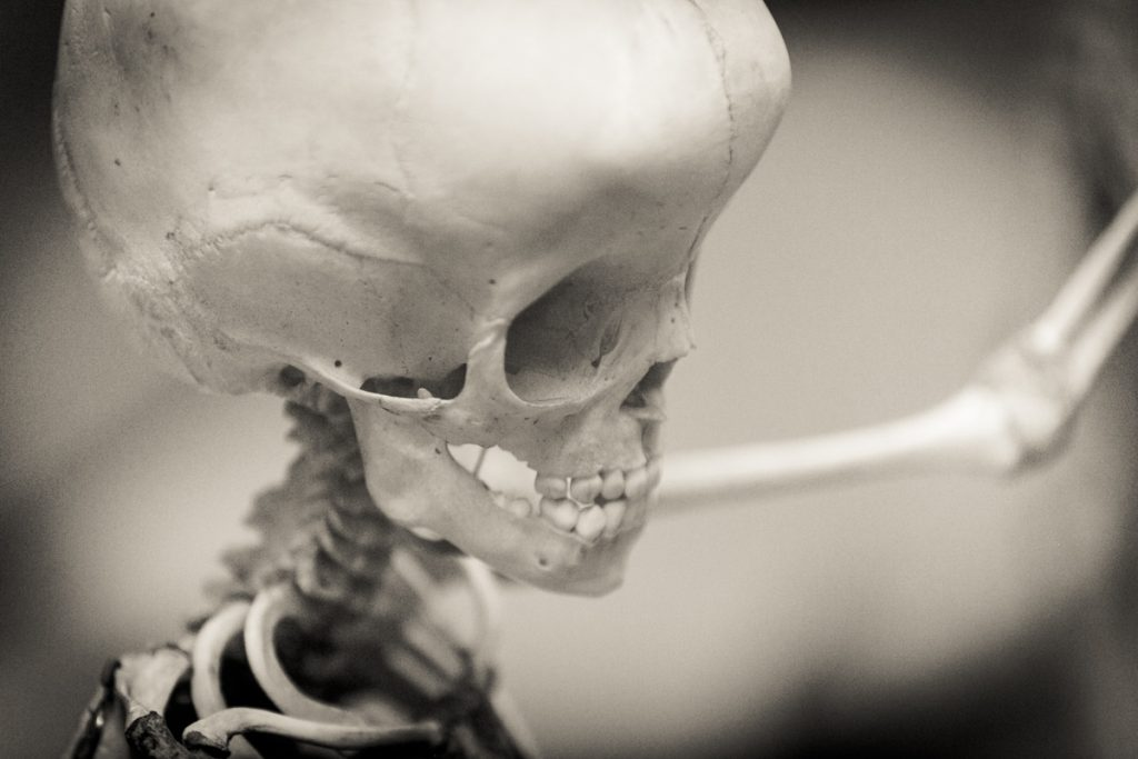 Fine art portrait series on bones by NYC photographer, Kelly Williams