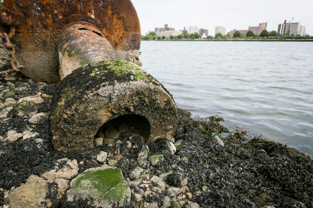Coney Island Creek by NYC photographer, Kelly Williams