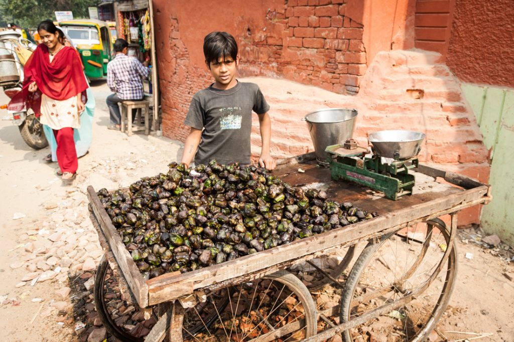 Boy selling vegetables on the street in Agra, India