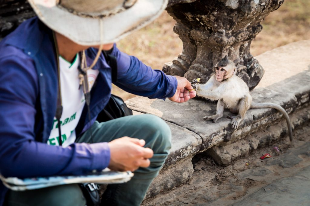 Man feeding a baby monkey for an article on Angkor Wat travel tips