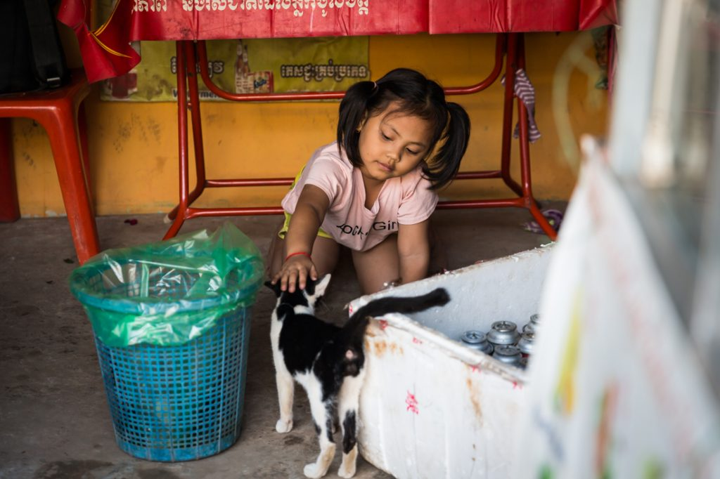 Little girl petting cat for an article on Siem Reap travel tips