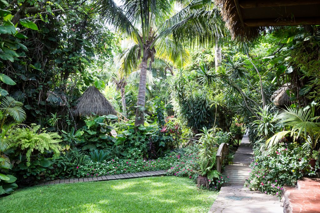 Gardens at the Hotel Manavai for an Easter Island travel guide