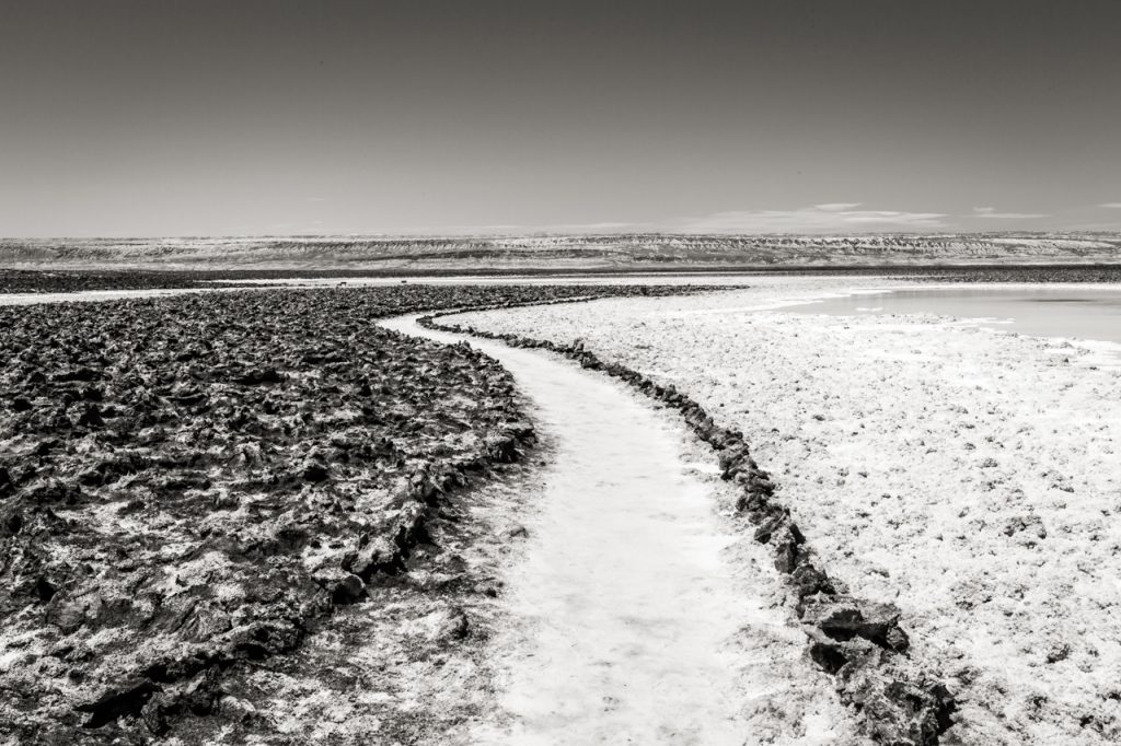Pathway at Laguna Baltinache in black and white