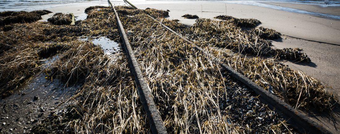 Railroad tracks in Jamaica Bay in Queens